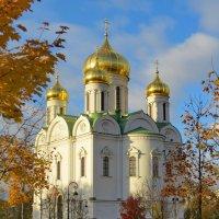 Екатерининский собор :: Светлана