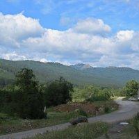 Сельская дорога :: Вера Щукина