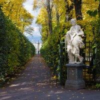 В Летний  сад пришла осень. :: Олег Бабурин