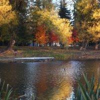 Осень в отражении :: Владимир Марков