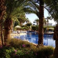 Раннее утро в курортном городке Акаба :: Жанна Мааита