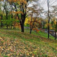 вот  и  осень............. :: Георгий Никонов