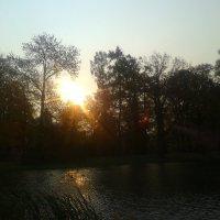 Осеннее утро :: Сапсан