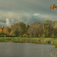 Осеннюю порой :: Владимир Гилясев