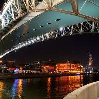 Столица вечерняя. :: tatiana