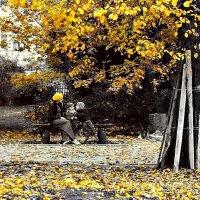 Осенью, осенью летят листья на землю... :: donat