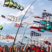 праздник ветра :: Inga Combal
