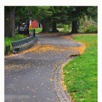 Central park path :: Алексей