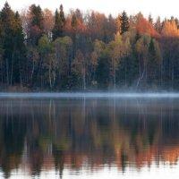 Утро первого заморозка :: liudmila drake