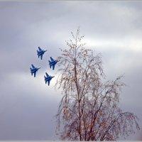 Русские Витязи :: muh5257
