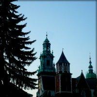 Вавиль.Замок в Кракове :: Galina Belugina