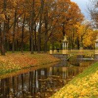 Рыжая осень :: Марина Павлова