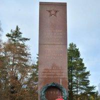 Памятник Советским Воинам в Финляндии :: Caren Yvonne Rikkilä
