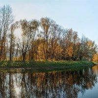 золотая осень :: олег кирюшкин