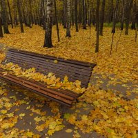 Вполне еще золотая! :: Андрей Лукьянов