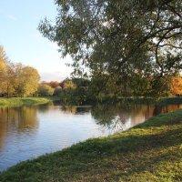 Осенью в парке :: Galina Dolkina