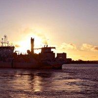 Обласканный закатом... :: Nina Yudicheva