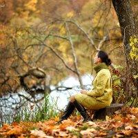 Осень :: Геннадий Шевлюк