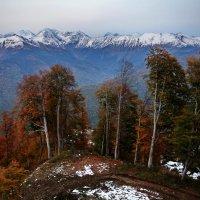 Осень в горах.Октябрь :: Виолетта