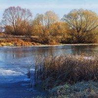 Засветилась первым льдом река... :: Лесо-Вед (Баранов)