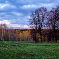 Битцевский парк :: Лариса Батурова