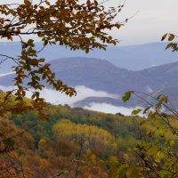 Туман в долине ... :: Serega Денисенко