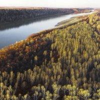 Осенняя Обь. Правый берег :: Сергей Жуков