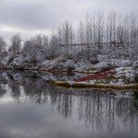 Первый снег :: Анатолий