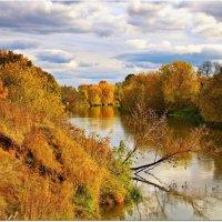 Золотая осень :: Вячеслав Минаев