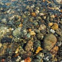 Морские камушки :: Ольга Зубова