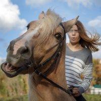 Кто еще сегодня не катался на лошадке? :: Елена Логачева