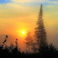 Смущённое солнце :: Сергей Чиняев