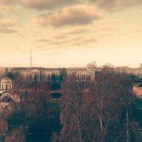 Осень Витебск :: alexN alex