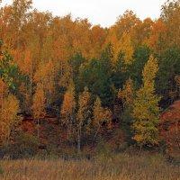 золотой октябрь :: оксана