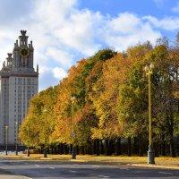 Московская осень. :: tatiana