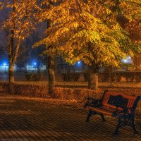 Раннее утро в липовой аллее :: Валерий Горбунов
