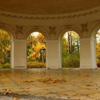 Осенний вальс :: Вера Моисеева
