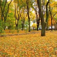 Kauno ruduo / Autumn in Kaunas :: silvestras gaiziunas