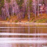 Тропинка вдоль озера. :: Вадим Басов