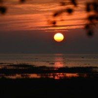 прощалось солнышко с заливом  касаясь ласково лучом :: Валентина Папилова