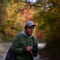 Пора выбираться из леса :: Валерий Дворников