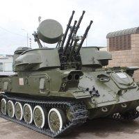 Вооружен и опасен для врагов :: Дмитрий Солоненко