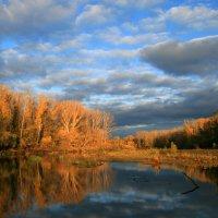 Октябрь окунулся в тень, луч солнца туча застилает... :: Евгений Юрков