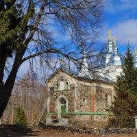 Апостольская православная церковь :: Татьянка *