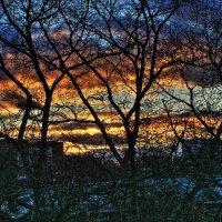 Уж небо осенью  дышало :: олег свирский