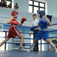 На ринге :: Светлана Т