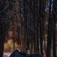 Ангел :: Константин Железнов