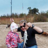 Рыбка :: Андрей Пашко