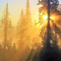 Солнце светлое восходит, озаряя мглистый дол :: Сергей Чиняев