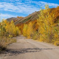 Дорога в осень :: Любовь Потеряхина